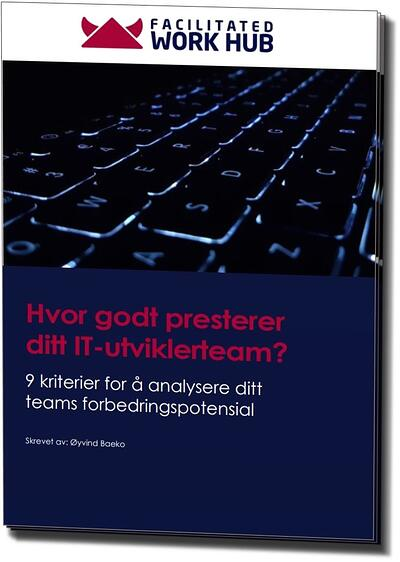 Hvor godt presterer ditt IT-utviklerteam [e-bok]_3D